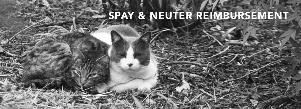 spay/neuter reimbursement